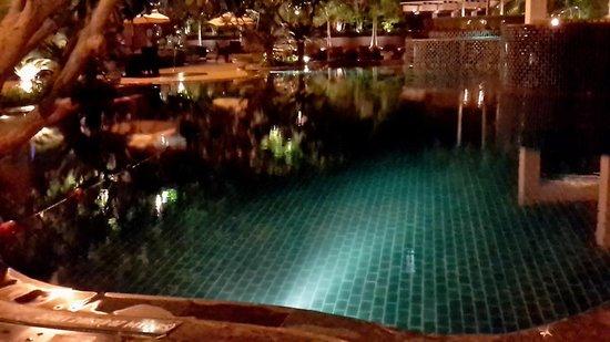 Radisson Blu Plaza Delhi : Swimming pool