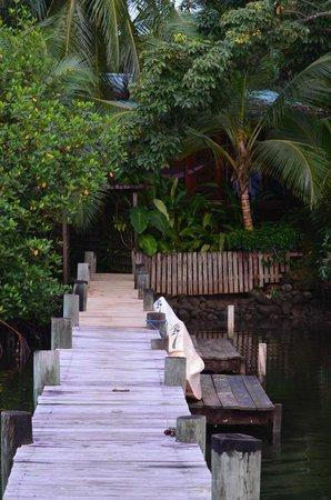 Garden of Eden Inn : Muelle al que salimos desde la habitacion.