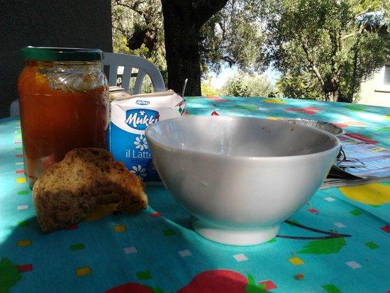 Camping Village Cerquestra: Colazione in veranda