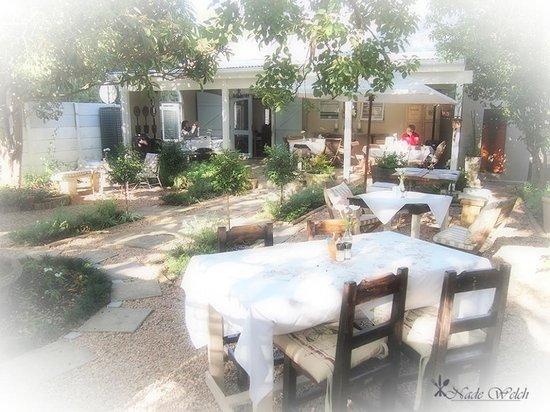 Bayleaf Cafe: The garden