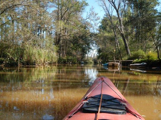 El Dorado Kayak : Relax and enjoy the view...