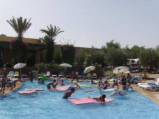 D jections de rats photo de club dar atlas marrakech for Club piscine catalogue
