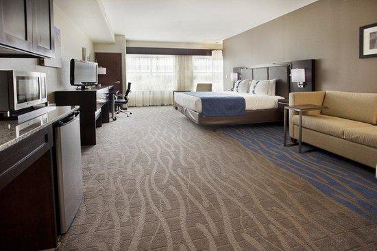 Holiday Inn Near Camp Bullis Picture Of Holiday Inn Hotel Amp Suites San Antonio