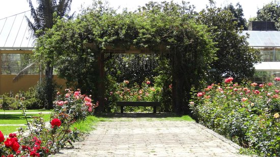 Foto de Jardín Botánico de Bogotá Jose Celestino Mutis, Bogotá ...