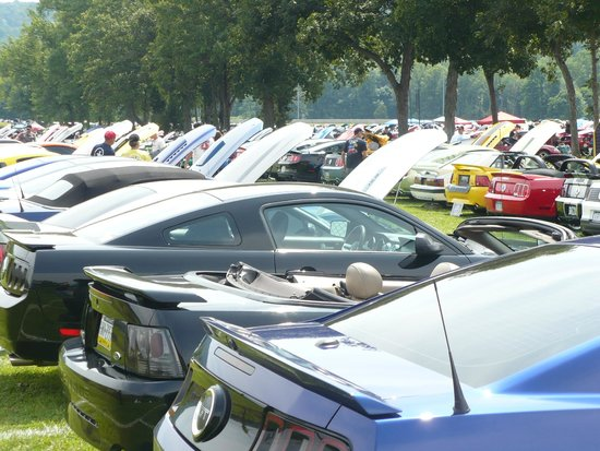 Maple Grove Raceway : over 2,500 Ford Mustangs