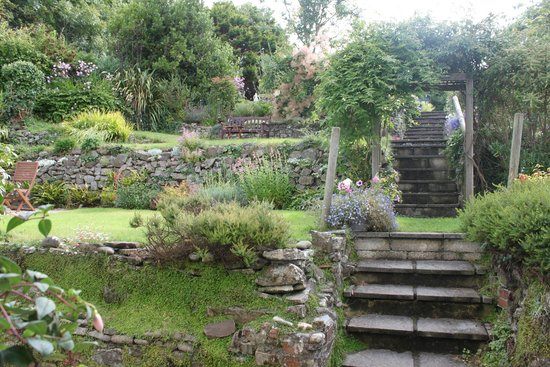 Stratton Gardens Guest House: Garden