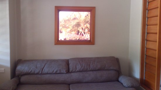 Plantation Island Resort: that's not a picture on the wall, its a view out the window!