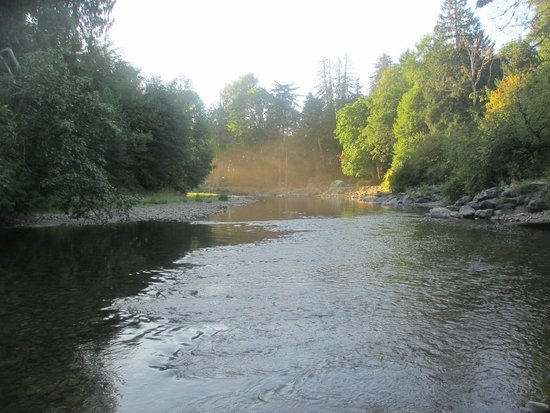 Cedar Grove RV Park & Campground: River running through the campground. Great swimming hole to cool off in.