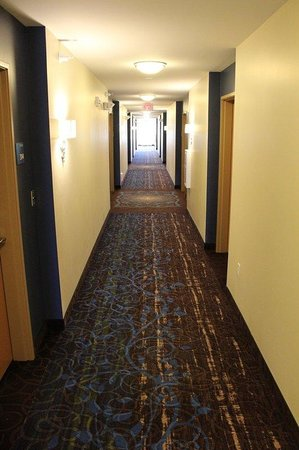 Holiday Inn Express - Albert Lea - I-35 : Hallway