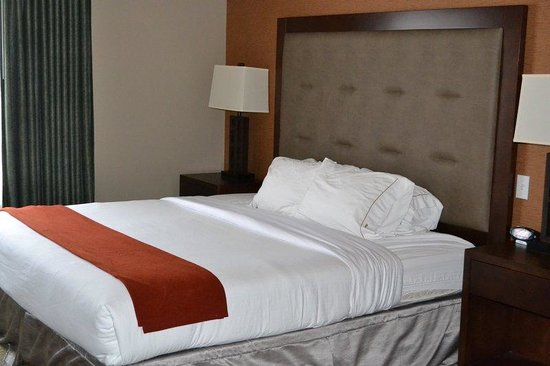 Holiday Inn Express Hotel & Suites Bozeman West: King Bed Guest Room