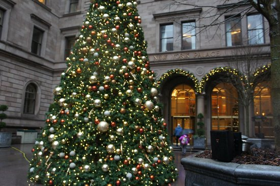The Towers at Lotte New York Palace : Christmas Tree in Courtyard December 2013