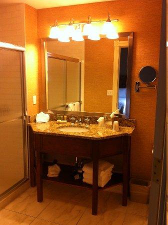 Fairfield Inn & Suites Albany Downtown: Bathroom