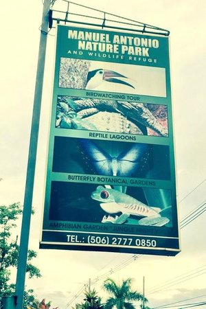 Greentique Costa Rica Tours: Out front