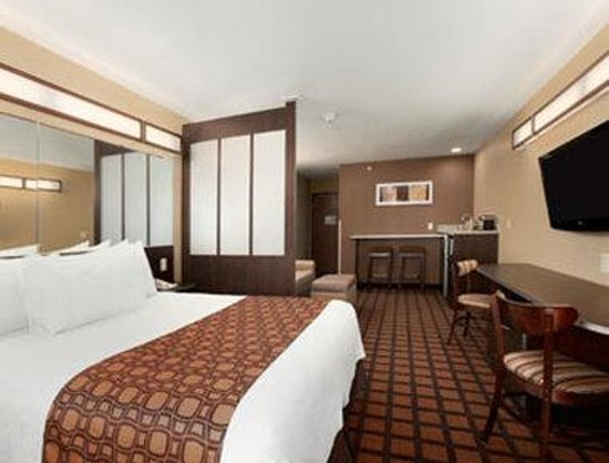 Microtel Inn & Suites by Wyndham Kalamazoo: Suite