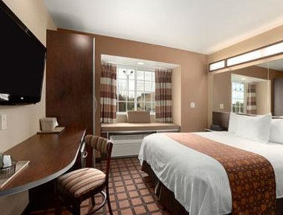 Microtel Inn & Suites by Wyndham Kalamazoo: Standard One Queen Bed Room