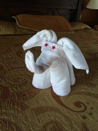 Hotel El Silencio del Campo: towel elephant
