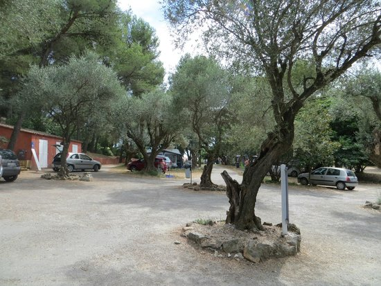 Camping le Beau Veze: entrance / parking site and view to the firste rows of camping pitches