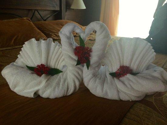 Hotel El Silencio del Campo: towel swans