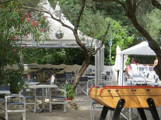 Camping le Beau Veze: restaurant / bar