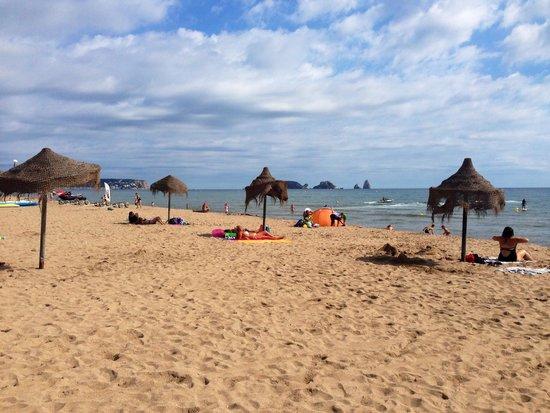 El Delfin Verde: Playa.