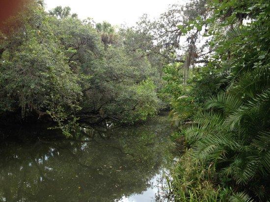 Koreshan State Historic Site : Koreshan State Park