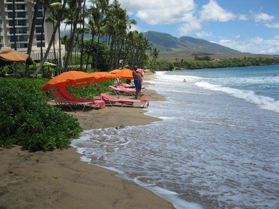 Hyatt Regency Maui Resort and Spa: Beauiful BUT NO BEACH