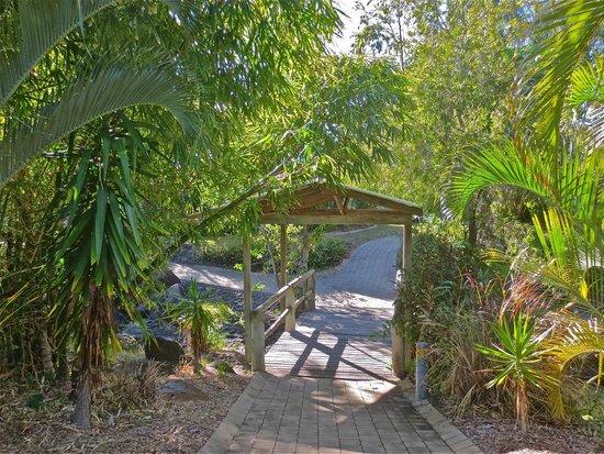Kelly's Beach Resort: wetland bridge