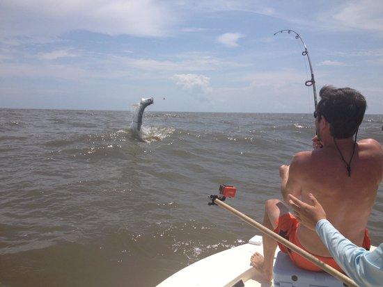 Carolina Guide Service Fishing Charters: Best trip ever