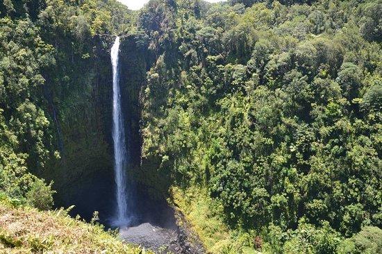 Akaka Falls State Park: Akaka Falls