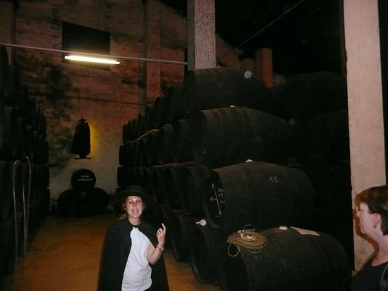 The House of Sandeman Jerez: Bodegas Sandeman