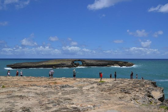 Laie Point State Wayside Park : The view
