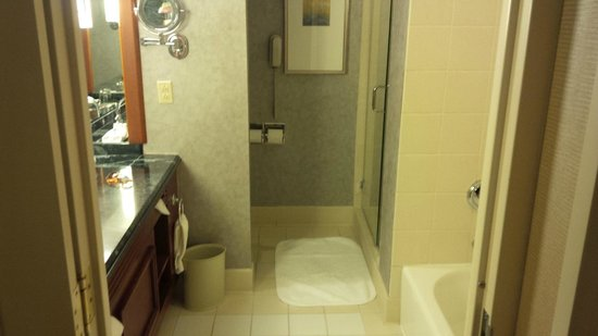 Renaissance Chicago Downtown Hotel: Clean bathrooms, with good water pressure - always important!