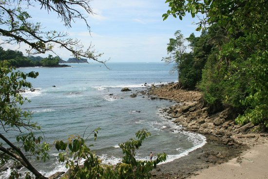 Playa Manuel Antonio: Manuel Antonio National Park