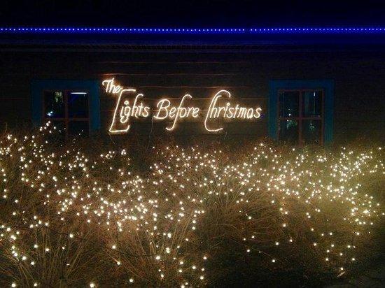 Toledo Zoo: The Lights Before Christmas - December 2013