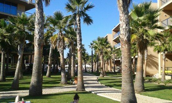 Salgados Palm Village Apartments & Suites: jardins