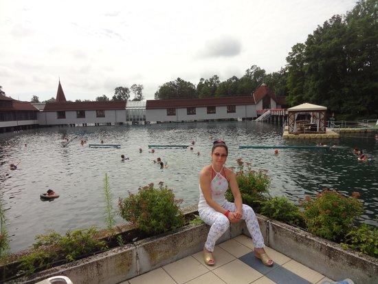 Hotel Erzsebet : Озеро