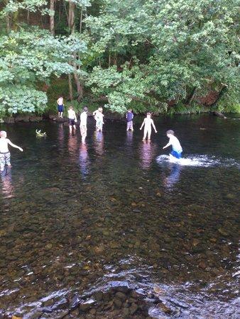 Riverside Camping: Kids love it