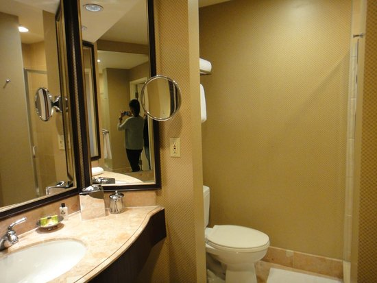 InterContinental Los Angeles Century City: Banheiro