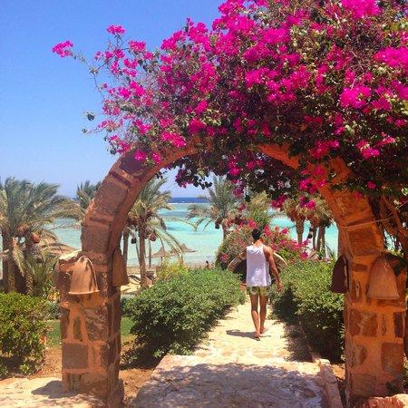 Eden Village Habiba Beach: habiba