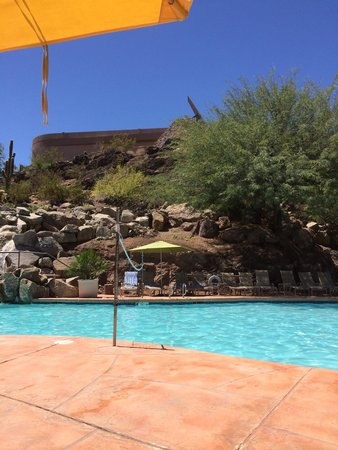Best pool picture of phoenix marriott tempe at the for Tempe swimming pool
