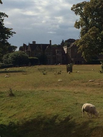 Fawsley Hall Hotel & Spa: View