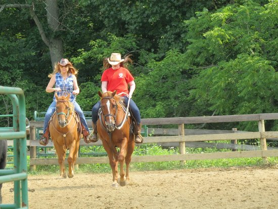KD Guest Ranch : Team cattle penning