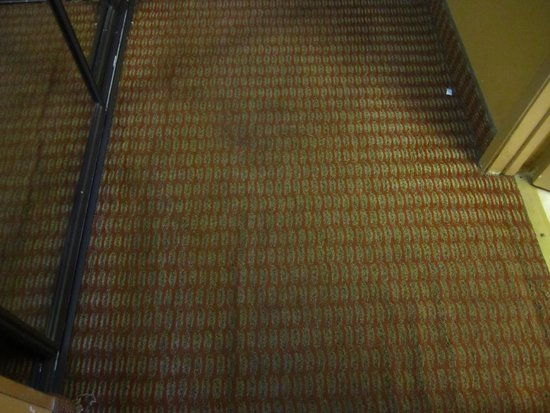 Catalina Canyon Resort & Spa: Soiled, stained, and rumpled, the carpet needs replacing