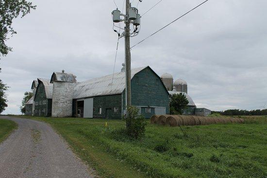 Blue Horizon : The neighboring farm