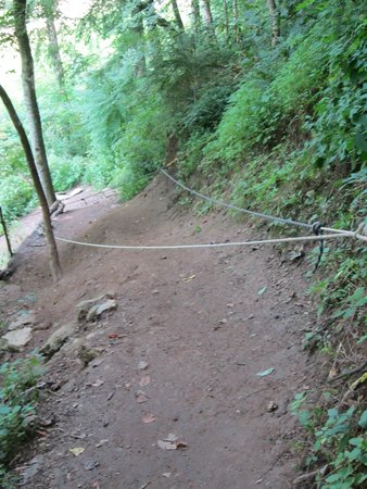 Cookeville, TN: The Ropes at the last section before river