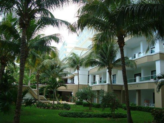 Hotel Riu Caribe: Jardim