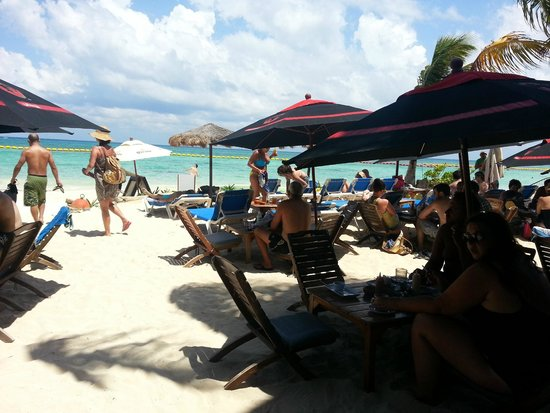 Fusion Bar & Restaurant: Beach Dinning Area