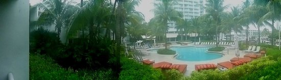 Hilton Fort Lauderdale Marina: The pool early morning