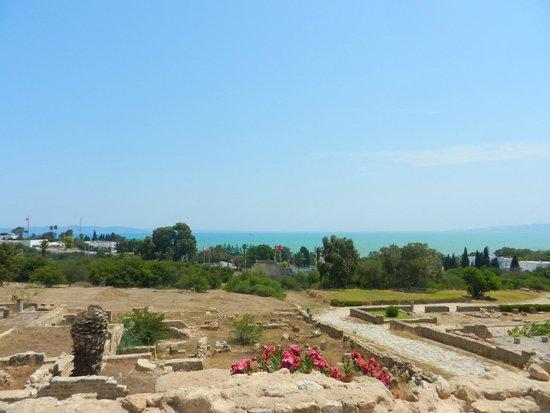 Carthaginian Ruins: vista dalle ville
