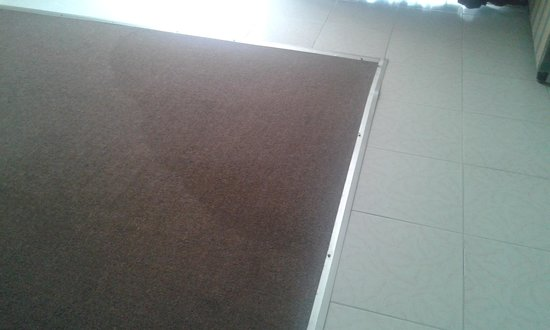 Hotel El Monte: alfombra mojada o manchada...
